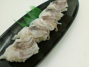 寿司ネタ ヤリイカ下足6g×20枚 すしねた やりいか げそ ゲソ 槍いか のせるだけ 生食用 刺身用