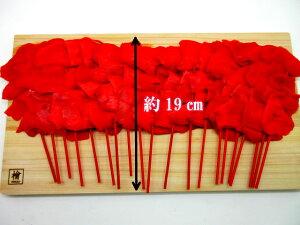 串紅生姜 甘酢漬け10本×2p 合計20本 紅しょうが べに 酢漬け 業務用 天ぷら 串かつ 薄切り 串カツ 常温 送料無料 ゆうパケット