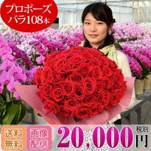 バラの花束 108本 プロポーズ 20,000円(税別...