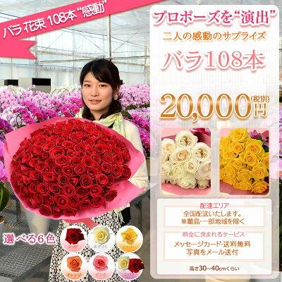 バラの花束詳細