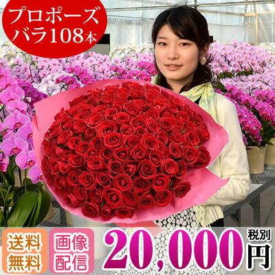 バラの花束108本