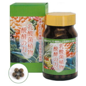 乳酸菌植物醗酵の力 30g(250mg×約120粒)