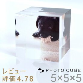 ペット 仏壇 フォトキューブ父の日ギフト 早割 犬 記念写真 プリント メモリアル グッズ ペット 写真立て 位牌 ペット 仏具 猫 写真 犬 写真 ペット 記念写真 犬 写真入りプレゼント 父の日 プレゼント