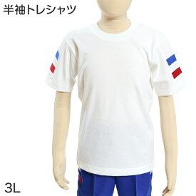 ギャレックス あわら市立細呂木小学校 体操服 半袖トレシャツ (3L)(Galax)ソーワ