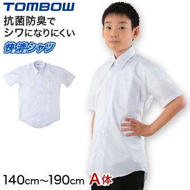 形態安定 抗菌防臭 半袖カッターシャツ 140cmA〜190cmA (ワイシャツ yシャツ シャツ 制服 中学生 高校生 通学 男子 白シャツ 学生 大きいサイズあり フォーマル ノーアイロン シワになりにくい 通学)【取寄せ】