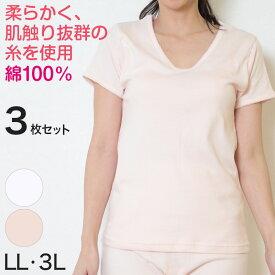 レディース 綿100% 半袖シャツ 大きいサイズ 3枚セット LL・3L (女性 婦人 インナー 下着 綿 コットン 吸汗速乾 スリーマー 白 ピンク U首)【取寄せ】