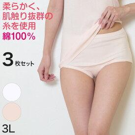デミアン 綿100% コーマ糸使用 ショーツ 3枚セット 3L (レディース 婦人 インナー 下着 綿 コットン 吸湿 日本製 大きいサイズ お腹すっぽり) (婦人肌着)【取寄せ】