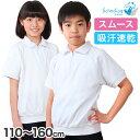 小学校 体操服 半袖 衿付き 110〜160cm (半袖体操服 小学生 男子 女子 半そで 体操着 スクール 体育 運動会 衣替え 子…