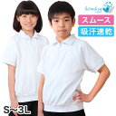SchooLog 吸汗速乾 半袖 衿付き 体操服 S〜3L (半そで 体操着 大きい 綿 白 体育 運動服 運動着 子供 男子 女子 小学…
