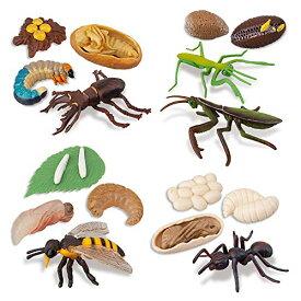 TOYMANY 昆虫フィギュアセット 動物フィギュア 成長サイクル 昆虫動物モデル リアルな動物模型 昆虫おもちゃ 誕生日プレゼント クリ
