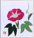 Ishi 5051 asagao pin