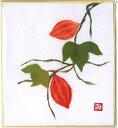 Ishi 5051 karasuuri