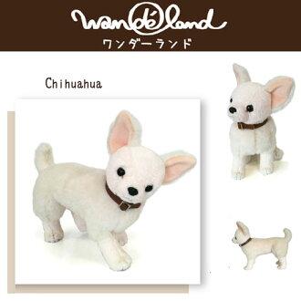 没有狗型人体模型万德狗奇瓦瓦〈狗·宠物、成犬尺寸狗模型狗玩偶的玩具玩具邮购〉