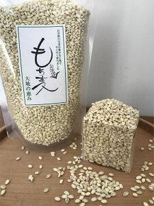 【ネコポス・送料無料】石川県産の美味しいもち麦!国産、水溶性食物繊維、ポスト投函、代金引換不可、日時指定不可