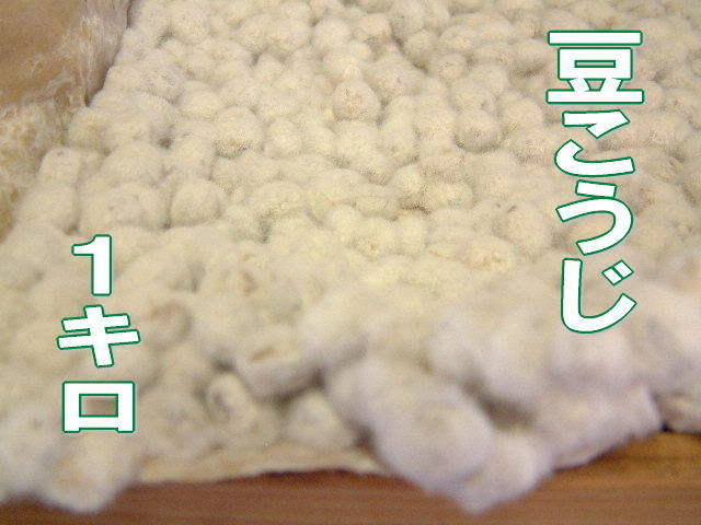 【01月31日(木)以降のお届け】豆こうじ1キロ