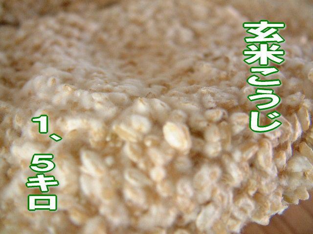 【11月24日(土)以降のお届け】玄米こうじ1.5キロ