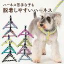 犬 ハーネス 胴輪 小型犬 中型犬 大型犬 日本製 おしゃれ かわいい 名入れ可 迷子札 水玉 ドットポップ ナチュラル 着…