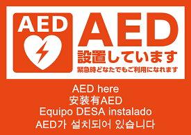 AEDシール A5版 両面印刷 ステッカー 5ヶ国語表示 日本AED財団監修 JIS規格準拠