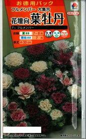 花種子 はぼたんたね (タキイ種苗) 葉牡丹フルメンバー大集合 1.3ml詰 【送料無料】