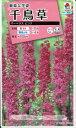 花種子 『タキイ種苗』 千鳥草 マーベラスピンク 0.5ml袋詰 【送料無料】