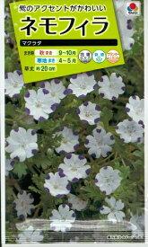 花種子 『タキイ種苗』 ネモフィラ マクラタ 1ml袋詰 【送料無料】