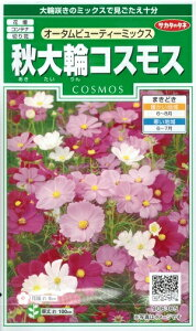 花種子 『サカタのタネ』 秋大輪コスモス オータムビューティーミックス 2ml袋詰 (約40本) 【送料無料】