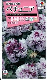 花種子 『タキイ種苗』 ペチュニア種子 パープルピルエット 50粒袋詰 【送料込み】