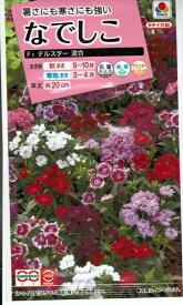 花種子 『 タキイ種苗 』 なでしこ(テルスター 混合) 0.2ml袋詰 【 送料無料 】