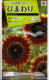 花種子 『 タキイ種苗 』 ひまわり(フロリスタン) 2ml袋詰 【 送料無料 】