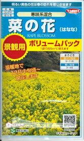 花種子 『 サカタのタネ 』 菜の花(寒咲き系混合) 5g袋詰め 【 送料無料 】