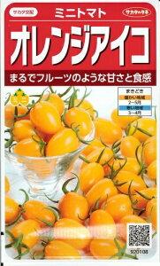 野菜種子 ミニトマトたね (サカタのタネ) オレンジアイコ 13粒袋詰 【送料無料】