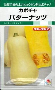 野菜種子 かぼちゃたね (タキイ種苗) バターナッツ 100粒袋詰 【送料無料】