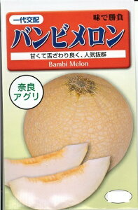 メロン種子 『 奈良アグリ 』 バンビーメロン 11粒袋詰 【 送料無料 】