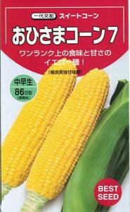 野菜種子 トウモロコシ種 『 タキイ種苗 』 おひさまコーン7 200粒袋詰 【 送料無料 】