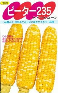 野菜種子 トウモロコシ種 『 サカタのタネ 』 ピーター235 200粒袋詰 【 送料無料 】