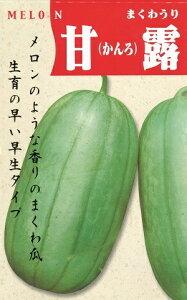 野菜種子 ウリ種 甘露甜瓜 20ml袋詰 【 送料無料 】