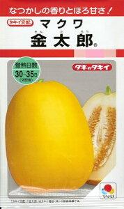 野菜種子 マクワウリ種 『 タキイ種苗 』 金太郎 35粒袋詰 【 送料無料 】