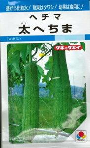野菜種子 ウリ種 『 タキイ種苗 』 太へちま 60粒袋詰 【 送料無料 】