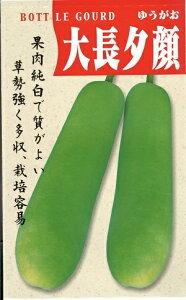 野菜種子 ウリ種 『 渡辺採種場 』 大長夕顔 1dl袋詰 【 送料無料 】