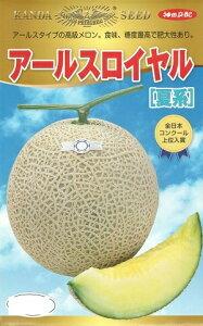 野菜種子 『神田育種農場』 アールスロイヤル 夏系 7粒袋詰 【送料無料】