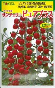 野菜種子 『トキタ種苗』 ミニトマト種子 サンチェリーピュアプラス 1000粒袋詰 【送料無料】