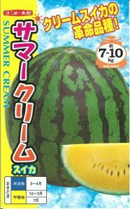 野菜種子 『ナント種苗』 スイカ種子 サマークリーム 8粒袋詰 【送料無料】