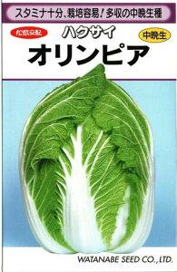 野菜種子 ハクサイたね (渡辺採種場) オリンピア 1.9ml袋詰 【送料無料】