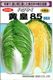 野菜種子 ハクサイたね (渡辺採種場) 黄皇85 1.3ml袋詰 【送料無料】