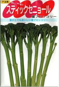 野菜種子 茎ブロッコリーたね (サカタのタネ) スティックセニョール 10ml袋詰 【送料無料】