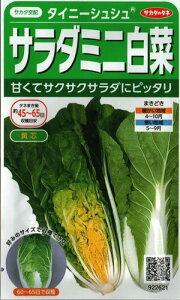 野菜種子 ハクサイたね (サカタのタネ) タイニーシュシュ 20ml袋詰 【送料無料】