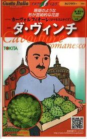 野菜種子 イタリア野菜 (トキタ種苗) ダ・ヴィンチ 50粒詰 【送料無料】カーヴォルフィオーレ(ロマネスコタイプ)