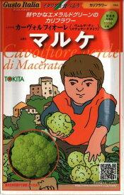 野菜種子 イタリア野菜たね 【トキタ種苗】 マルケ  50粒袋詰 【送料無料】