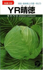 野菜種子 キャベツたね 高農交配 YR晴徳 1,5ml袋詰 【送料無料】