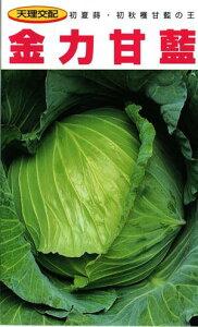 野菜種子 キャベツ 甘藍 (大和農園) 金力 20ml袋詰 【送料無料】